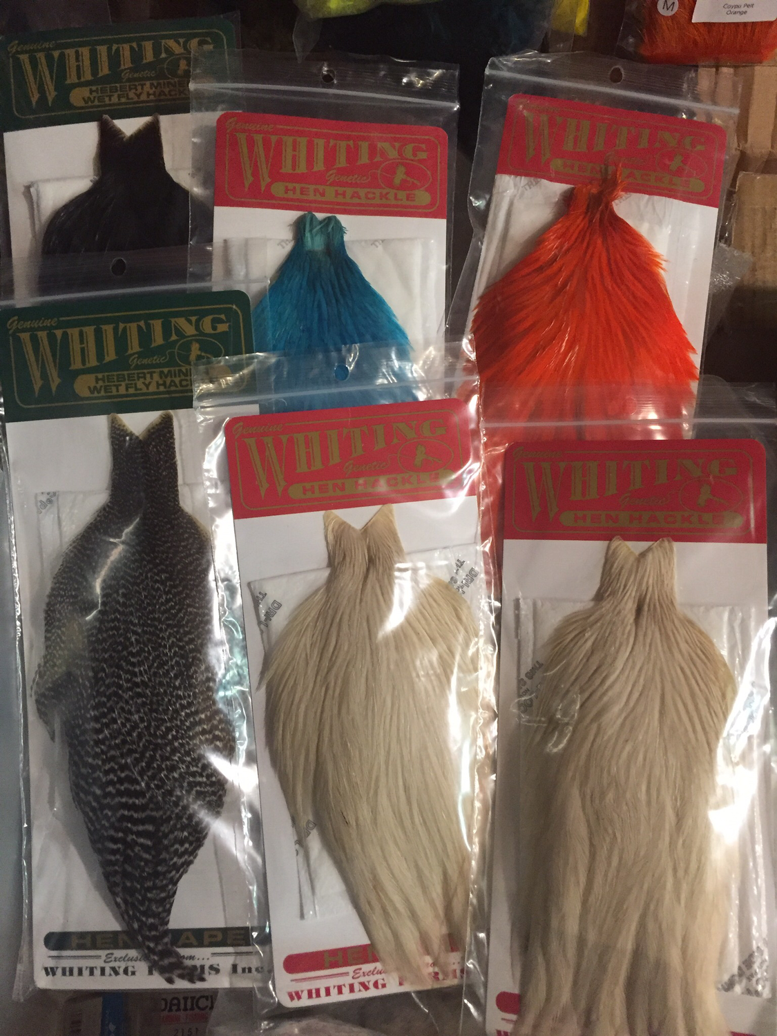 Six Whiting Hen Capes