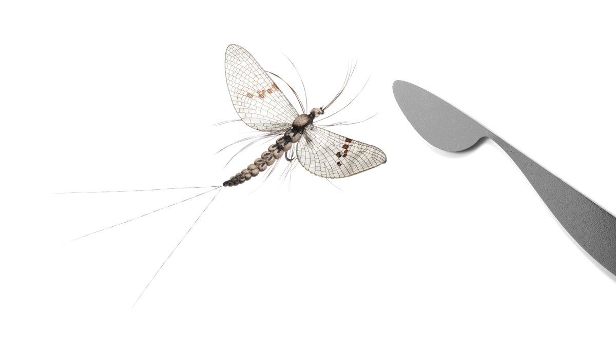 J:sonSweden Realistic Wing Burner (Mayfly)