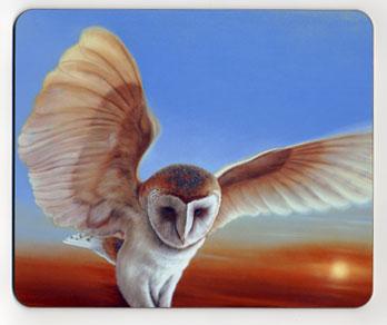 Sunset Flight. Placemat