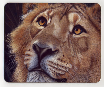 Up Close Lion. Placemat