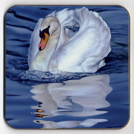 Mute Swan and Reflection. Coaster