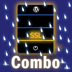 SSL Hosting & Maintenance Combo
