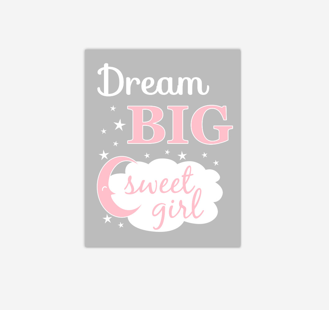 Pink Gray Grey Dream Big Baby Girl Nursery Wall Art Print Canvas Decor Picture
