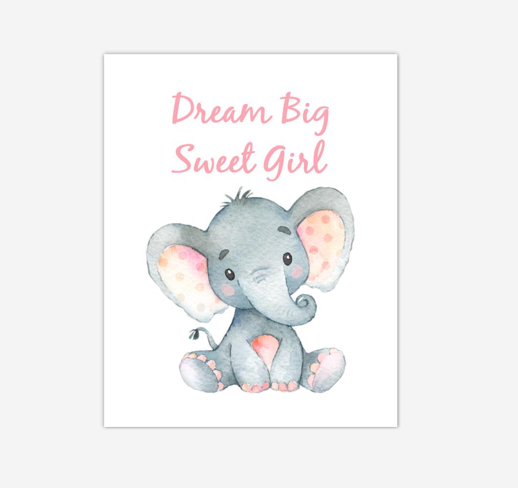 Elephant Baby Girl Nursery Wall Art Canvas Prints Safari Animals Dream Big Baby Nursery Decor