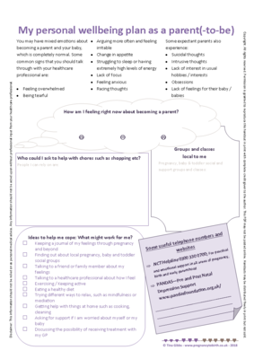Handout: Wellbeing plan (print-your-own)