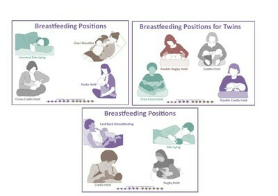 Breastfeeding Positions - PowerPoint for online learning