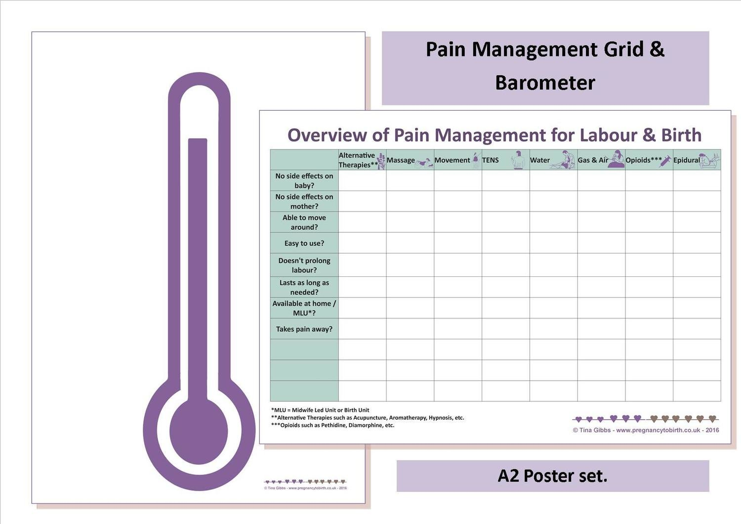 Pain Management Grid & Clear Barometer - A2 poster set