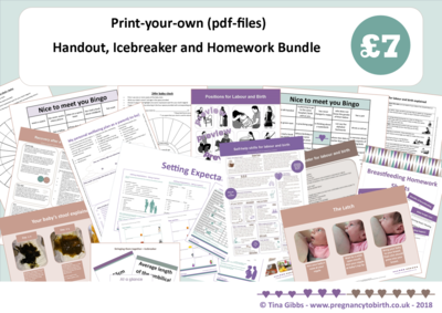 Handout, Icebreaker and Homework Bundle (zip file containing pdf files)