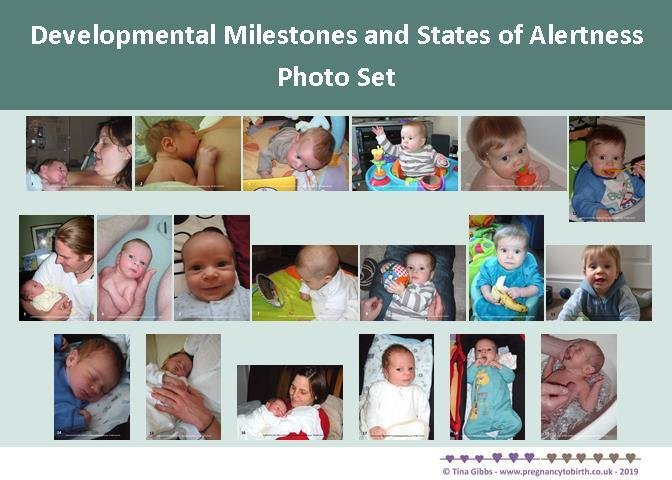 Newborn/Baby Developmental Milestones and States of Alertness Photo Set