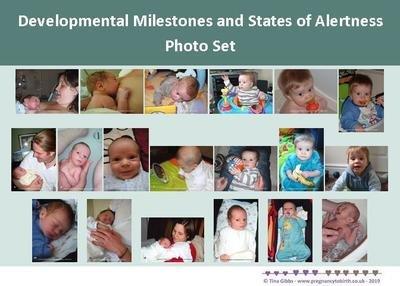 Newborn/Baby Developmental Milestones and States of Alertness Photo Set