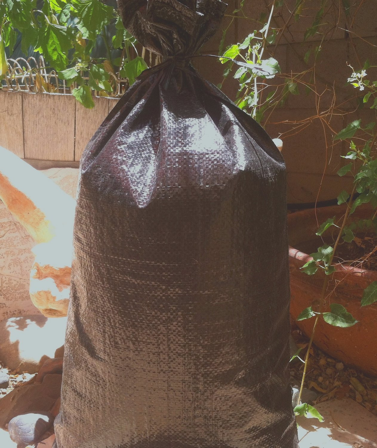 """Filled black heavy-duty 4-year poly bags, 14""""x26"""", avg. 35 lbs. each, starting at $5.00 each"""