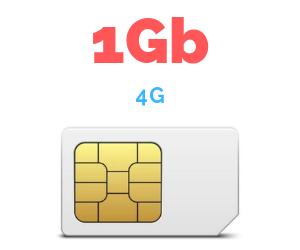 ONLY SIM 1 GB