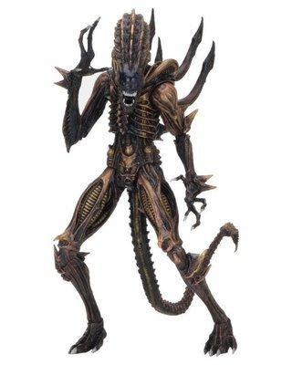 PRE-ORDER Aliens Series 13 Scorpion Alien Figure