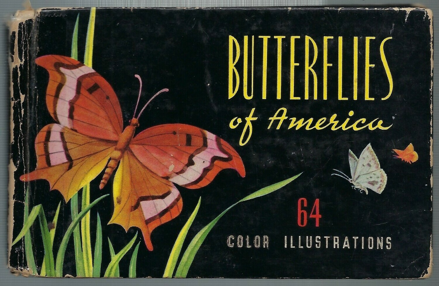 Mini butterfly book 1948 Instant Download
