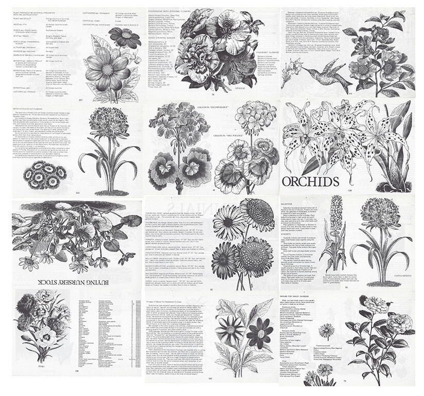 vintage plant book collage pak