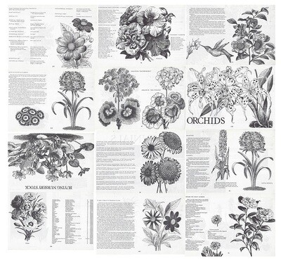 Vintage Plant Book collage pak ***PRINTED VERSION***