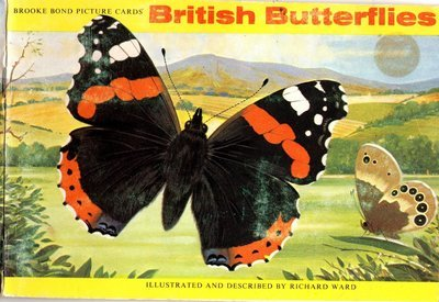 British butterfly vintage book 11 page instant download