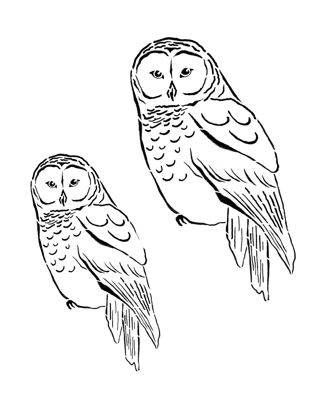 Woodland creatures owl