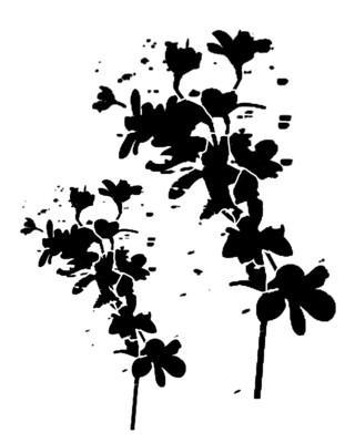 Messy Flower Silhouette stencil
