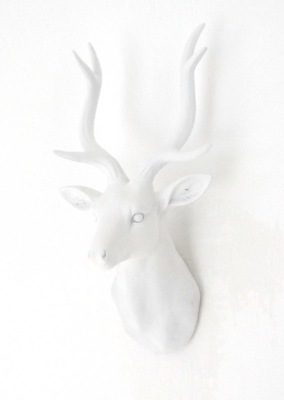 Image of   Gevir (Hvid)
