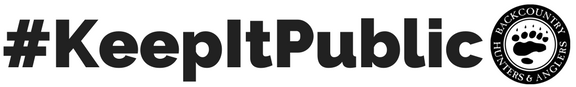 #KeepItPublic Clear Sticker
