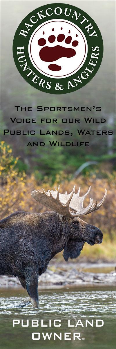BHA Moose Banner