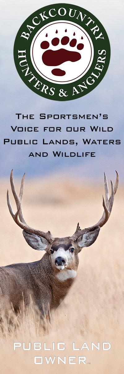 BHA Mule Deer Banner