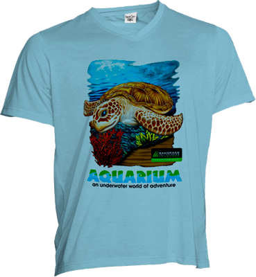 ADULT V-NECK T SHIRT - BLUE