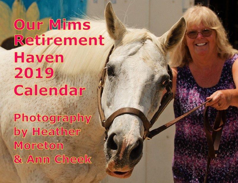2019 Calendar of Haven Horses