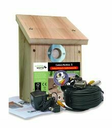 Colour and Infrared Camera Wildlife Nest Box