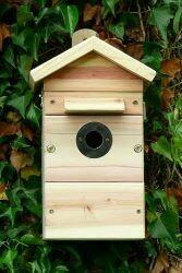 Premium Camera Wildlife Nest Box