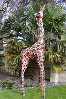 The Lofty Giraffe