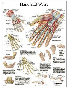 Hand & Handled (3B)