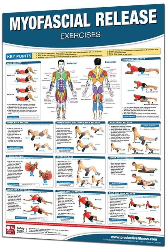 Pilates & Trigger Roll