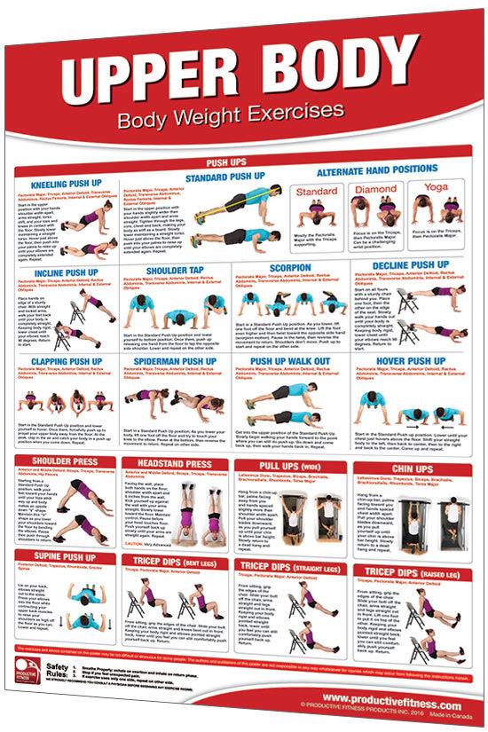 Body Weight Upper Body