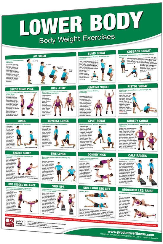 Body Weight Lower Body