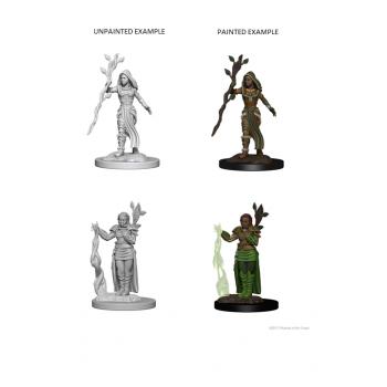 D&D Nolzur's Marvelous Miniatures - Human Female Druid