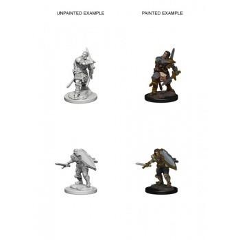 D&D Nolzur's Marvelous Miniatures - Human Male Paladin