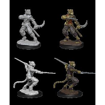 D&D Nolzur's Marvelous Miniatures - Male Tabaxi Rogue WZK73540
