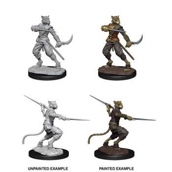 D&D Nolzur's Marvelous Miniatures - Male Tabaxi Rogue