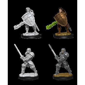 D&D Nolzur's Marvelous Miniatures - Male Human Fighter