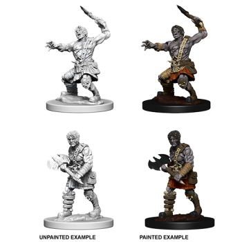 D&D Nolzur's Marvelous Miniatures: Nameless One