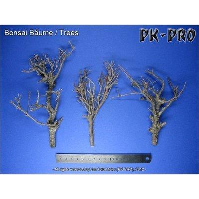 CP-Bonsai-Bäume - PK-Pro