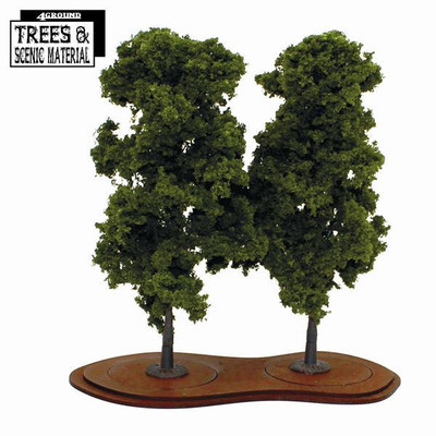 Mature Chestnut Trees (2x) Kastanienbaum - 4Ground