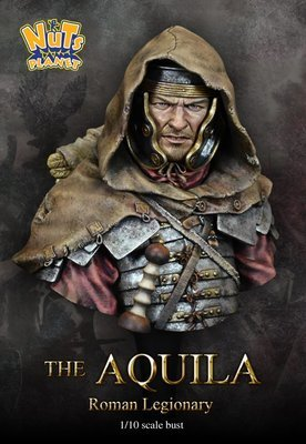 The Aquila Bust Büste - Nutsplanet