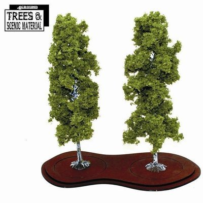 2x Mature Birch Trees - Birke - 4Ground