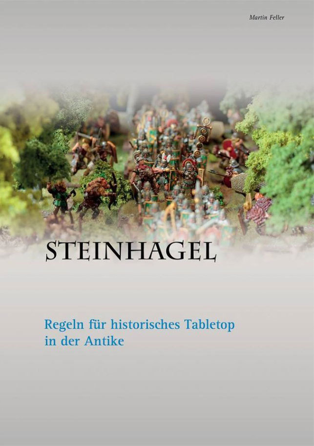 Steinhagel Regelbuch - Martin Feller 77348