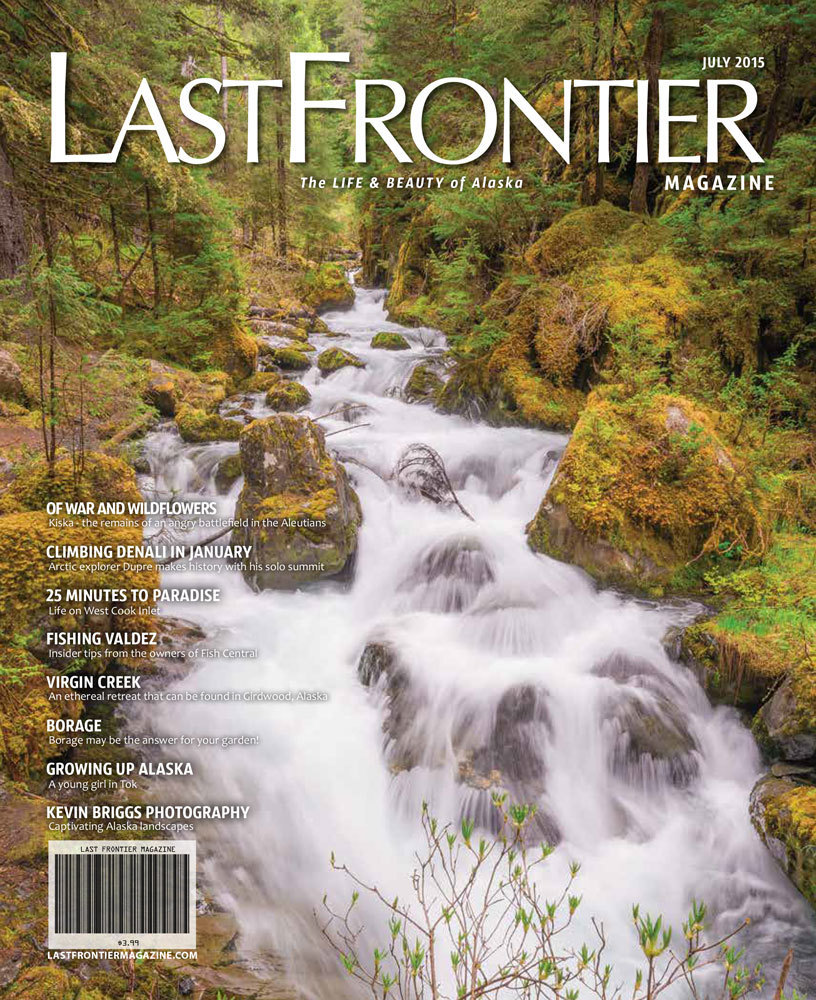 July 2015 Issue 200023