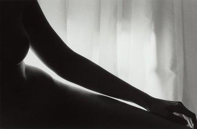 Tobi Wilkinson - Languid