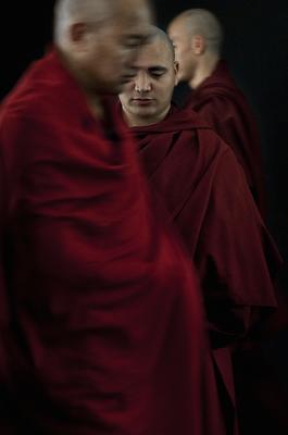 Tobi Wilkinson - Reverence